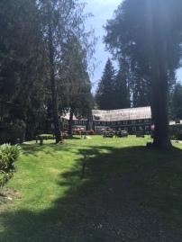 Lake Quinalt Lodge