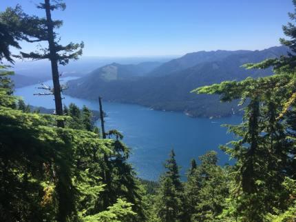 Lake Cushman: Mt. Ellinore hike on www.mylocalcollaborative.com